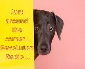 RevoLuton Radio